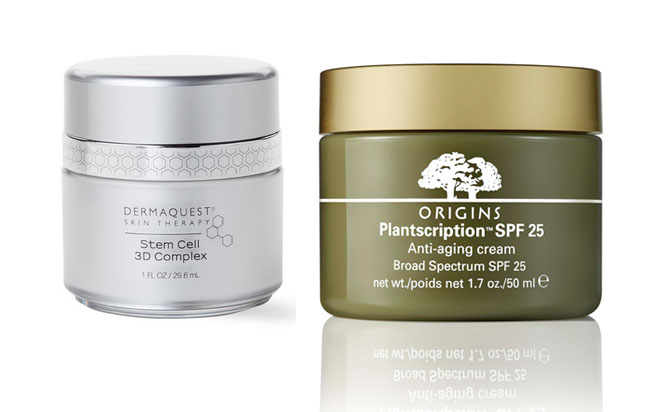 What Are Stem Cells And Why Are They In Your Face Cream Stylecaster