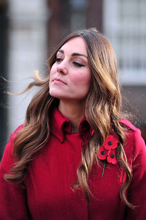 Even Kate Middleton has to deal with gray hair.